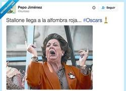 Enlace a La madre de Stallone es en realidad... por @kurioso