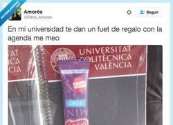 Enlace a Saben que los estudiantes comemos muy mal por @Elena_Amoros