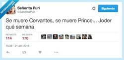 Enlace a Si es que no ganamos para disgustos... por @SenoritaPuri