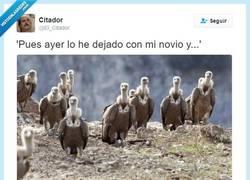 Enlace a Ay, las rupturas... por @El_Citador