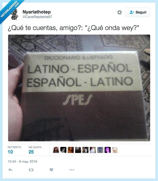 amigo,castellano,cuentas,diccionario,español,expresiones,latin,latino,onda,wey