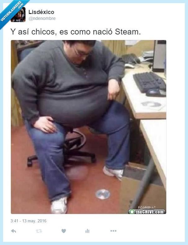 cd,coger,digital,gordo,juego,online,steam,suelo,videojuegos