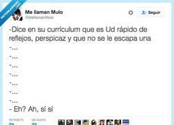 Enlace a Esto pasa por mentir en el curriculum por @mellamanmulo
