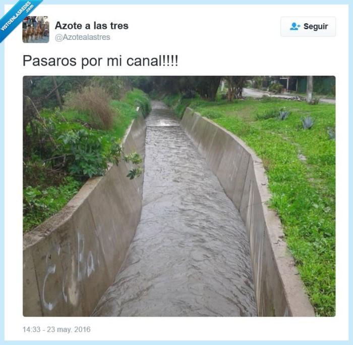 agua,canal,pasaos,pasaros,youtube