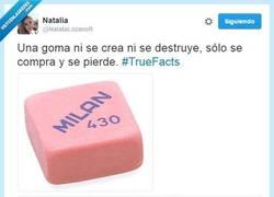 Enlace a La verdad sobre las gomas de borrar por @NataliaLozanoR