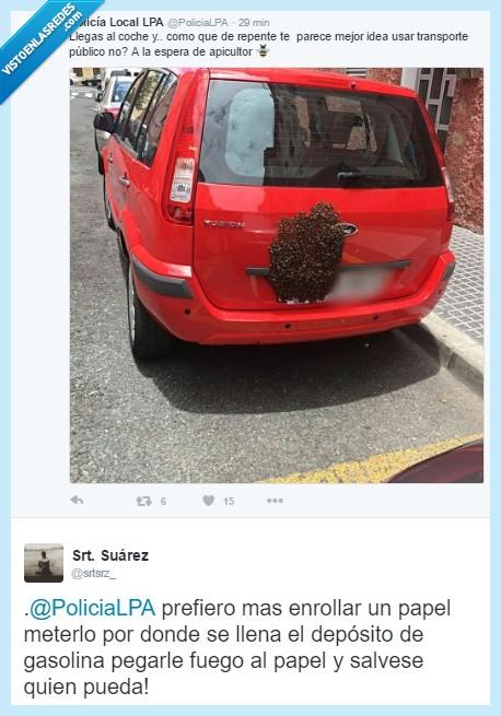 abeja,apicultor,colmena,las palmas,policía,quemar coche,transporte público