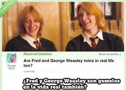 Enlace a ¿Fred y George Weasley son gemelos en la vida real?