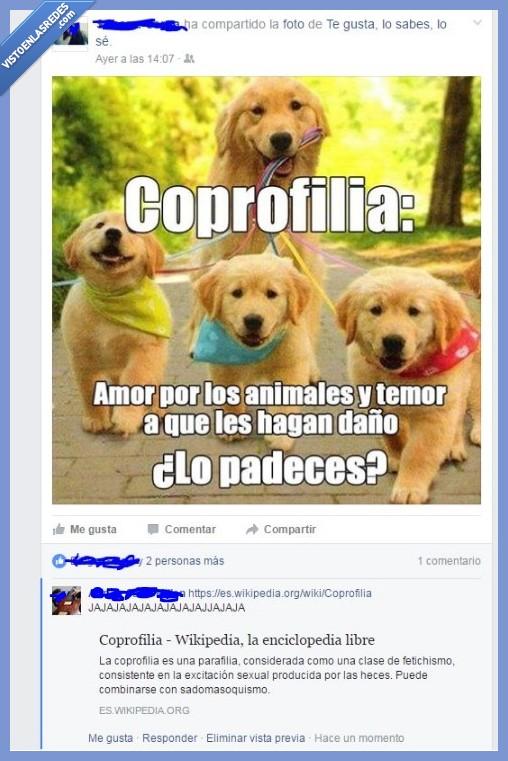Coprofilia,inculta,perritos