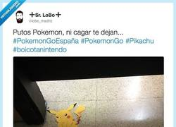 Enlace a ¡Pokemon Go hasta en la sopa! por @lobo_madriz