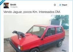 Enlace a Vendo Jaguar, por @Lleguito