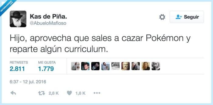 currículum pokémon go,cv