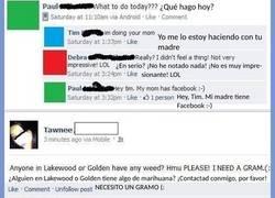 Enlace a Recopilación de grandes respuestas de Facebook
