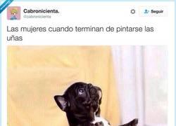 Enlace a Tras pintarse las uñas, por @cabronicienta