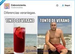 Enlace a Diferencias veraniegas, por @cabronicienta