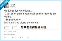 Enlace a Animales con complejos y chistes malos por @yotopo