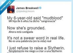 Enlace a Puedes pertenecer a Gryffindor, donde habitan los valientes