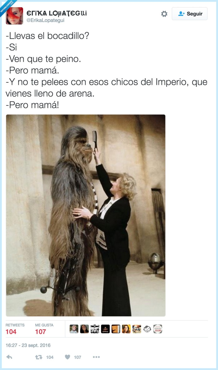 chebacca,star wars