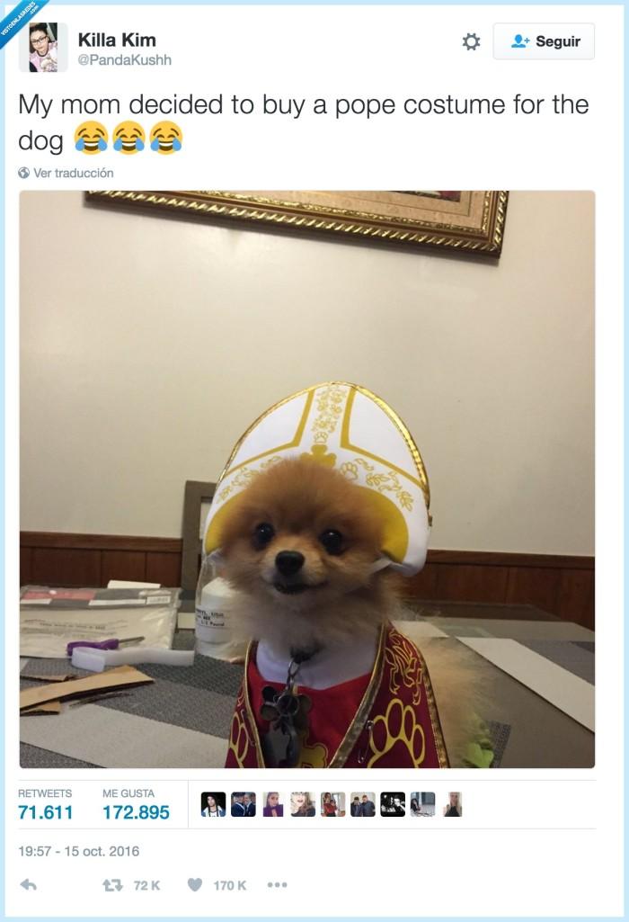 papa,perro,vestido