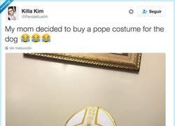 Enlace a Madres que compran vestidos de Papa al perro