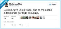 Enlace a Ves como mi gandulería tiene explicación por @Mellamanmulo