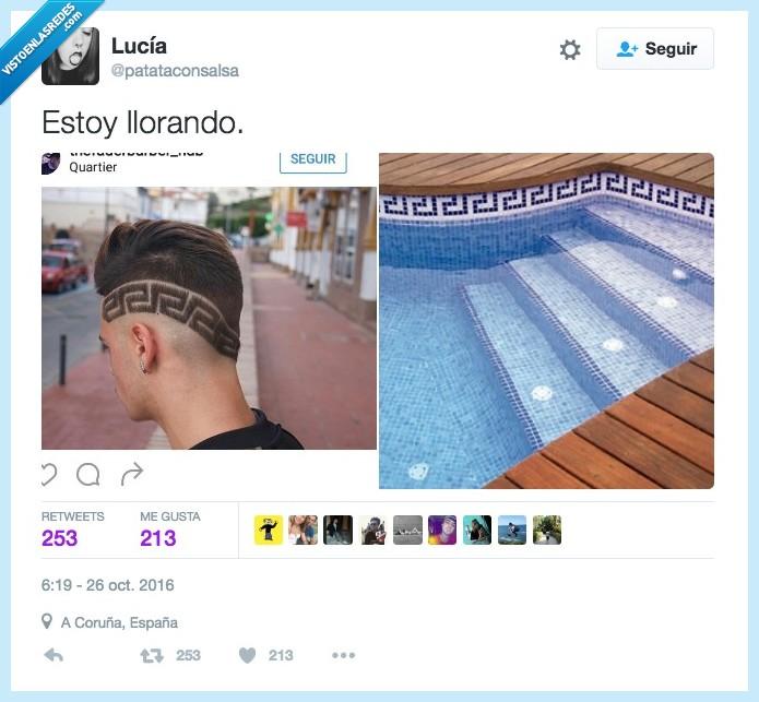 cenefa,peinado,pelo,piscina