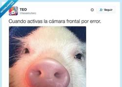Enlace a Vaya DRAMA por @teoestuitero