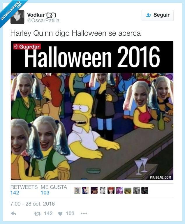 halloween,harley quinn,original