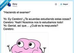Enlace a Y así con todos los exámenes @dory
