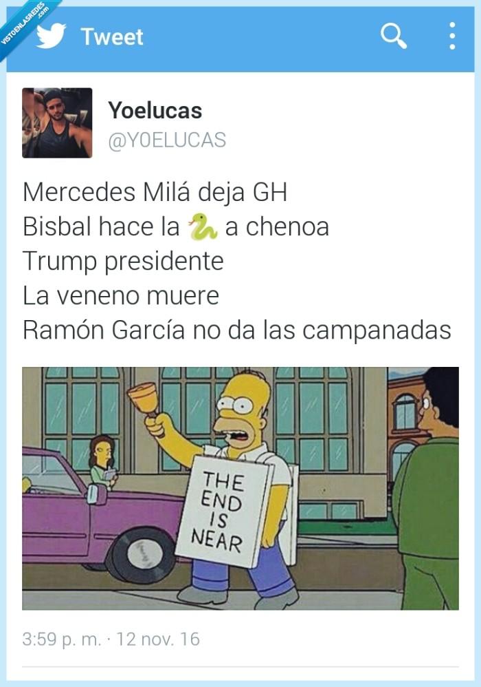 campanadas,gh,Homer,Mercedes,Trump,veneno
