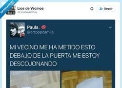 Enlace a Vecinos que son un poco ratas por @LiosdeVecinos