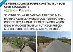 Enlace a Murcia: tierra de almendros y licencias para clubs de alterne
