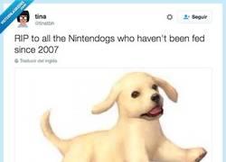 Enlace a DEP a todos los NintendoDogs que no son han sido alimentados desde 2007 por @tinatbh