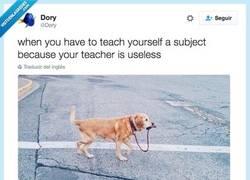 Enlace a Cuando tienes que aprender por tu cuenta una asignatura porque tu profesor no lo hace por @Dory