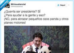 Enlace a El presidente de Canadá solo quería abrazar pandas por @MrInsustancial