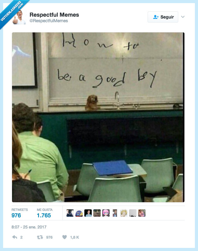 perro,pizarra,profesor