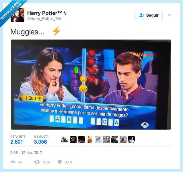 Harry Potter,muggle,sangre sucia