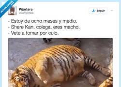 Enlace a No cuela... por @LaPijortera