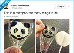 Enlace a Esto es una metáfora de muchas cosas en la vida por @Frauenfelder