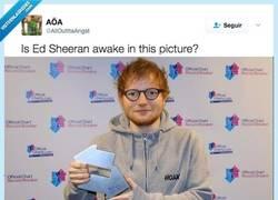 Enlace a ¿Está Ed Sheeran despierto en esta foto?