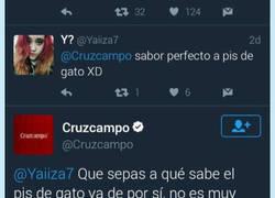Enlace a Todo el mundo se mete con Cruzcampo pero tienen un CM que reparte zascas como nadie por @mejoreszas