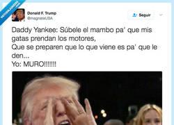 Enlace a La canción preferida de Trump por @magnateUSA