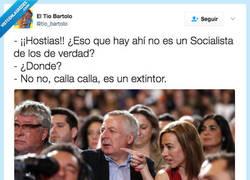 Enlace a Ya decía yo que un rojo en el PSOE... por @tio_bartolo