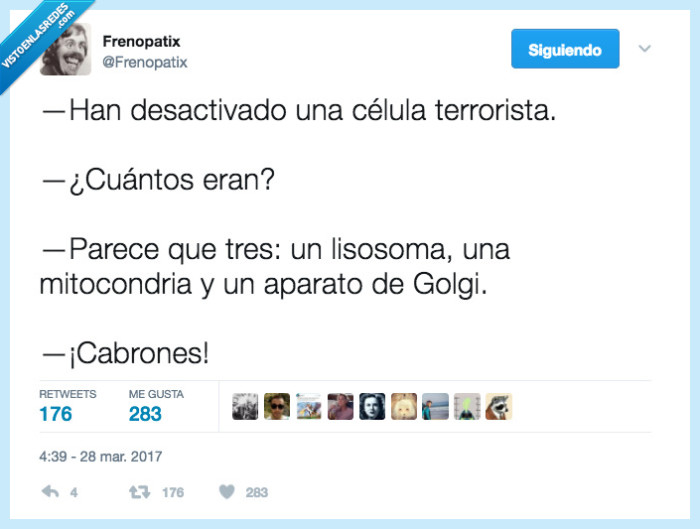 biología,célula,terrorista