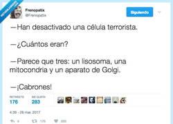 Enlace a Los terroristas más buscados en los libros de biología por @Frenopatix