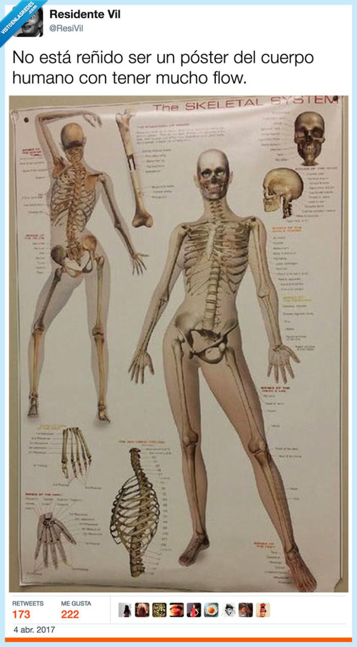 bailongo,esqueleto,flow,ser