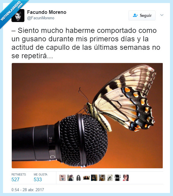 animales,chistacos,insectos