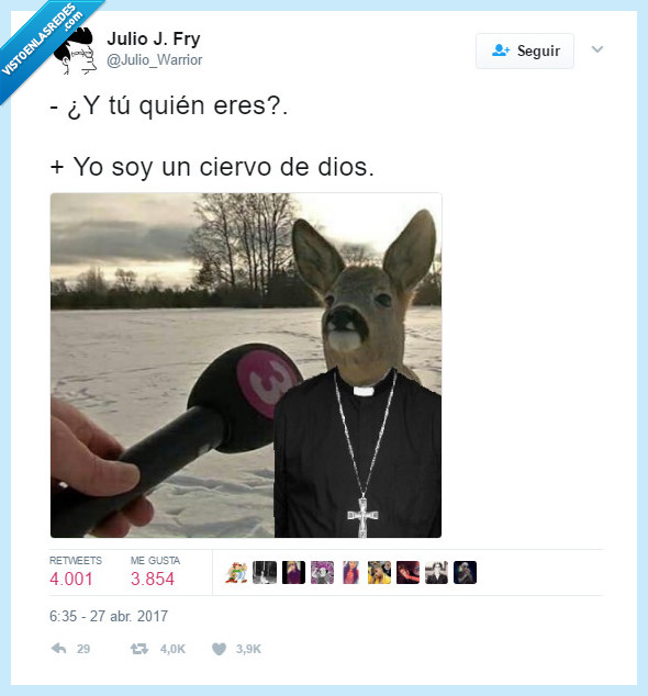 ciervo,meme,padre