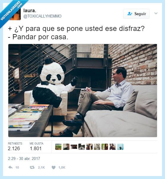 casa,estar,panda