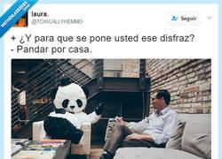 Enlace a El panda que se viste pandar por casa, por @TOXICALLYHEMMO