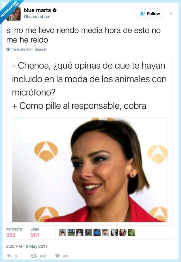 animales,chenoa,cobra